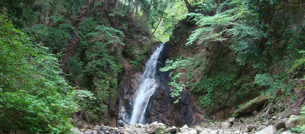 滝の様風景